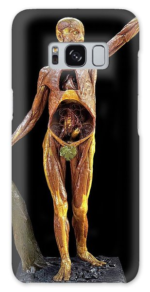 Anatomical Model Galaxy Case - Anatomical Model by Javier Trueba/msf