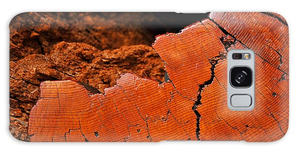 Ancient Log Galaxy Case by Crystal Hoeveler