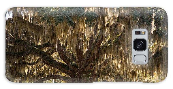 Ancient Oak 1 Galaxy Case