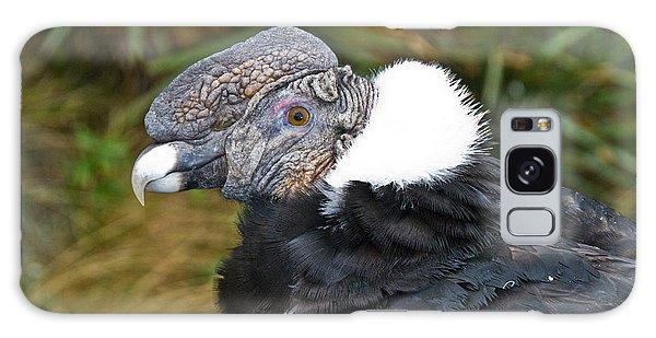 Andean Condor Galaxy S8 Case