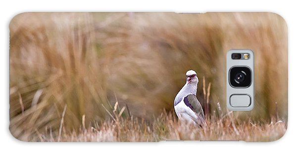 Andean Lapwing Galaxy Case