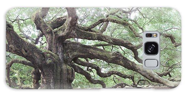 Angel Oak Galaxy Case