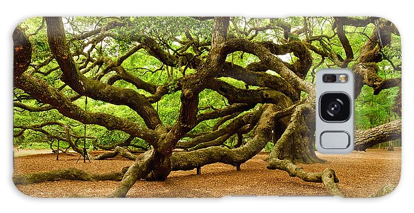 Angel Oak Tree Branches Galaxy Case