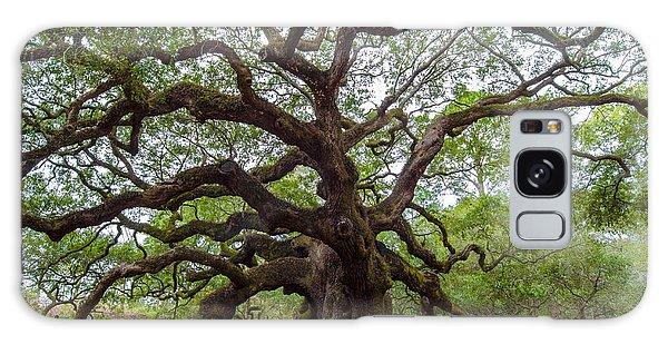 Angel Oak Tree Galaxy Case by Dale Powell