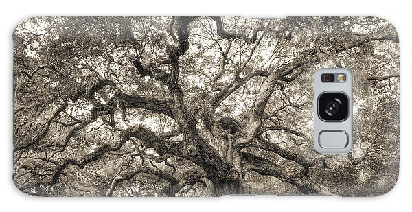 Angel Oak Tree Of Life Sepia Galaxy Case