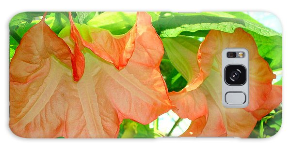 Angel Trumpet  Galaxy Case by Kay Gilley