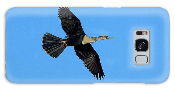 Anhinga Female Flying Galaxy Case