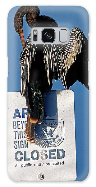 Anhinga Perched On A Signpost Galaxy Case