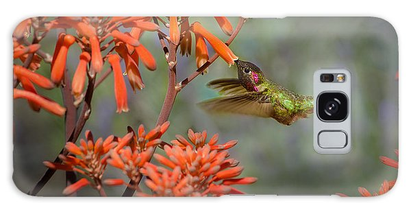 Anna's Hummingbird Galaxy Case by Linda Villers