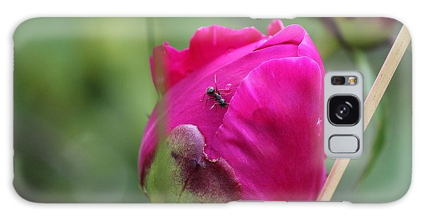 Galaxy Case featuring the photograph Ant On Peony by Ann E Robson