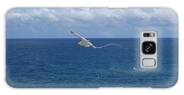 Antigua - In Flight Galaxy Case