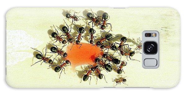 Ants Feeding Galaxy Case by Heiti Paves