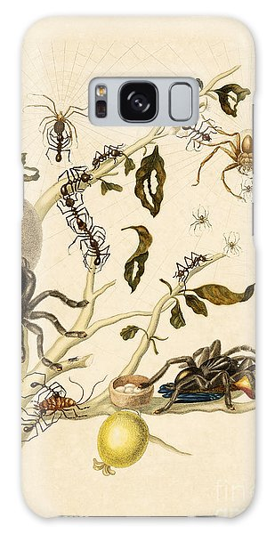 Art Institute Galaxy Case - Ants Spiders Tarantula And Hummingbird by Getty Research Institute