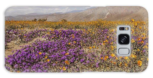 Anza-borrego Wildflowers 25 Galaxy Case