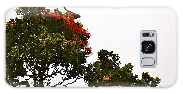 Apapane Atop An Orange Ohia Lehua Tree  Galaxy Case