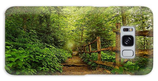 Appalachian Trail At Newfound Gap Galaxy Case by Stephen Stookey