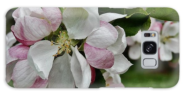 Apple Blossoms 2 Galaxy Case by VLee Watson