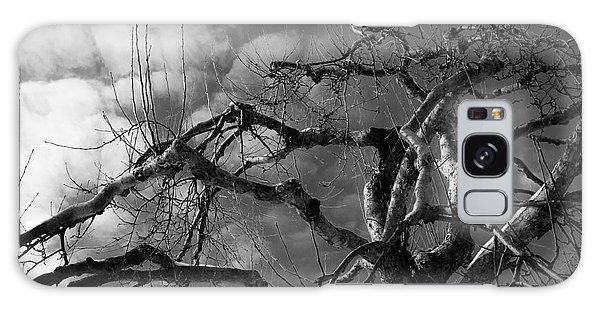 Apple Tree Bw Galaxy Case