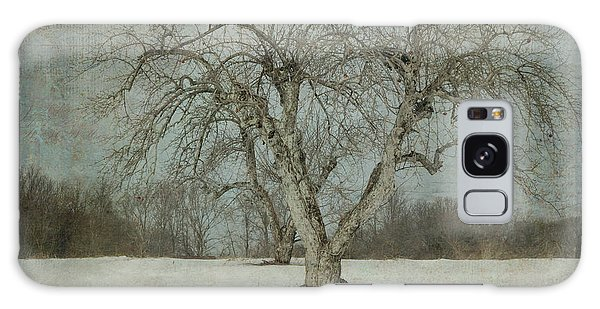 Apple Tree In Winter Galaxy Case by Vicki DeVico