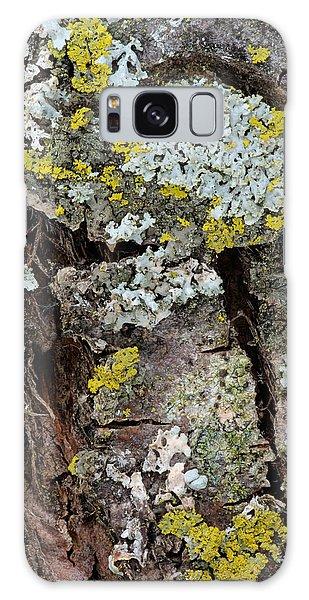 Apple Tree Lichens Galaxy Case