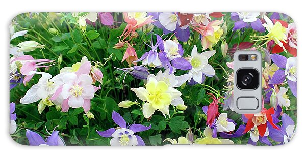 Aquilegia Galaxy Case - Aquilegia Caerulea by Mike Comb/science Photo Library