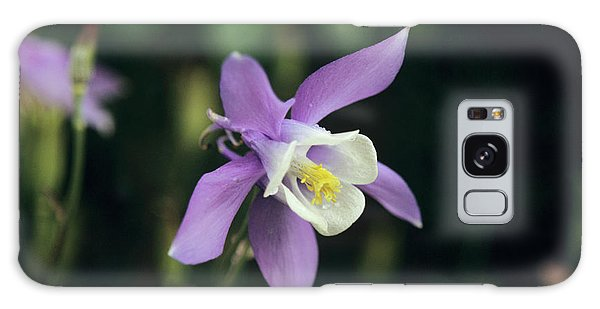 Aquilegia Galaxy Case - Aquilegia by Mrs W D Monks/science Photo Library
