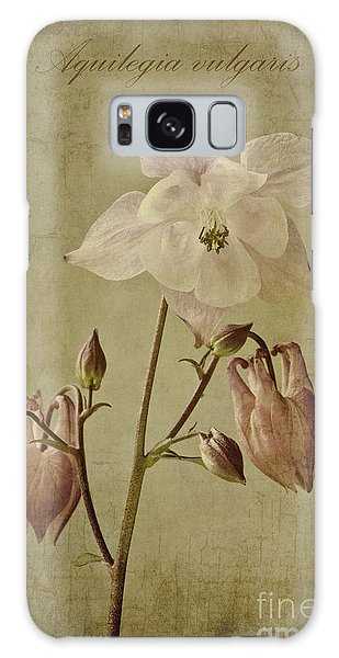 Aquilegia Galaxy Case - Aquilegia Vulgaris With Textures by John Edwards