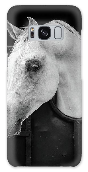 White Horse Galaxy S8 Case - Arabian Horse by Waseem Al-hammad
