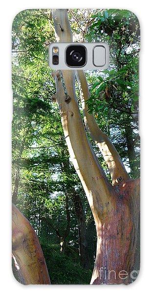 Arbutus Tree Galaxy Case