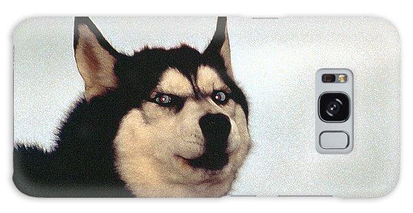 Arctic Dog Galaxy Case