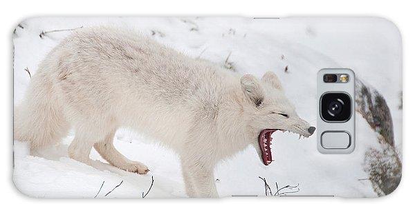 Arctic Fox Galaxy Case