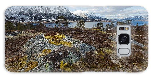Arctic Lichen Galaxy Case