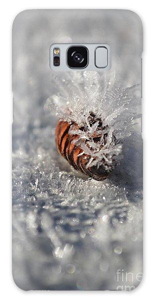 Arctic Pine Cone Porcupine Galaxy Case