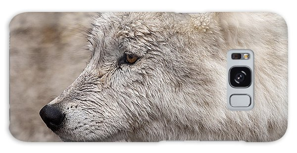 Arctic Wolf Galaxy Case