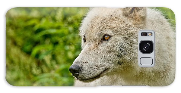 Arctic Wolf Pictures 241 Galaxy Case
