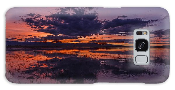 Arizona Beauty Galaxy Case by Beverly Parks