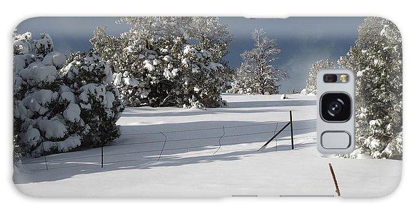 Arizona Snow 3 Galaxy Case