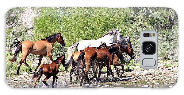 Arizona Wild Horse Family Galaxy Case