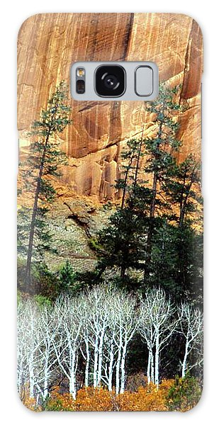 Arizona's Betatkin Aspens Galaxy Case