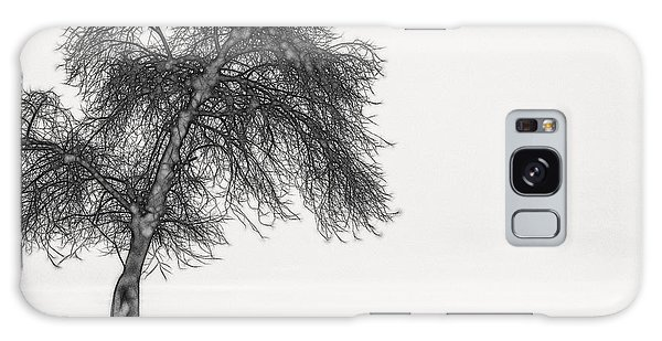 Artistic Black And White Sunset Tree Galaxy Case