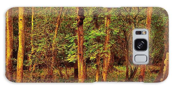 Ash Trees Galaxy Case