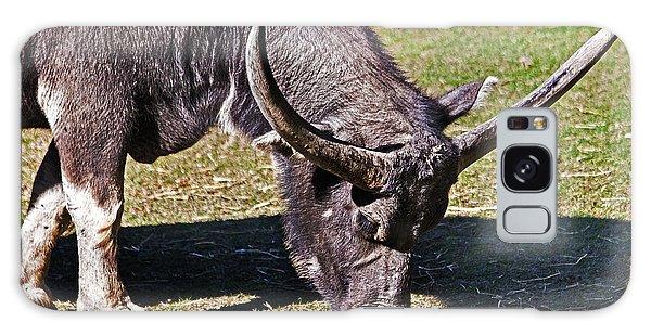 Asian Water Buffalo  Galaxy Case