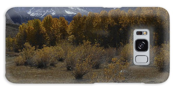 Aspen And Snow Capped Mountain Galaxy Case