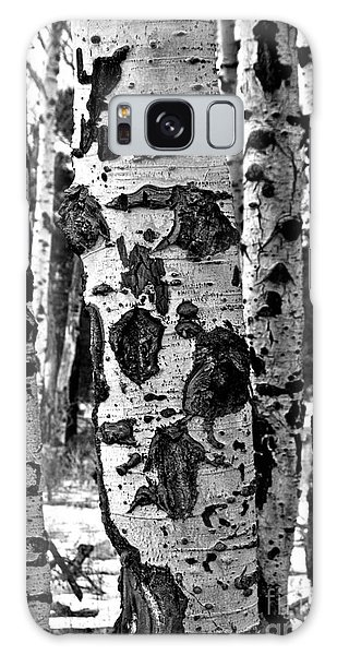 Galaxy Case featuring the photograph Aspen Art by Mae Wertz