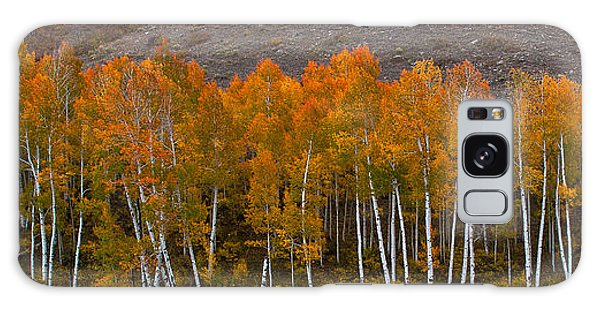 Aspen Band Galaxy Case by Steven Reed