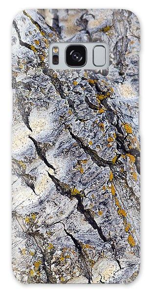 Aspen Bark Galaxy Case
