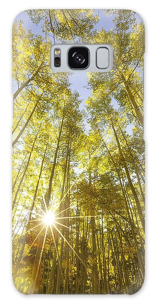 Aspen Day Dreams Galaxy Case