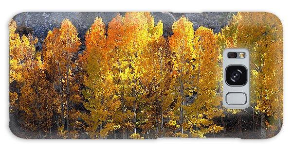 Aspen Gold Galaxy Case by Lynn Bauer