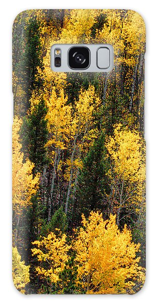 Aspen Grove Galaxy Case