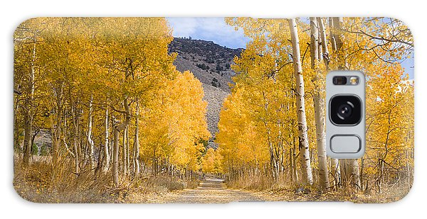 Galaxy Case featuring the photograph Aspen Lane Wide Crop by Priya Ghose